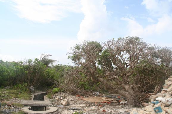 Острови Спратлі