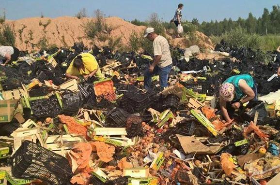 Россельхознадзор савгуста нынешнего года уничтожил 11 тыс. тсанкционных продуктов