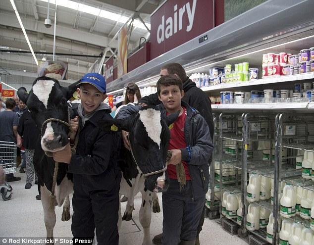 Супермаркетом ходили корови та їхні юні господарі