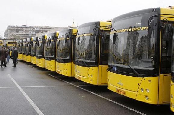 Депутаты хотят ввести обязательное страхование ответственности водителей общественного транспорта