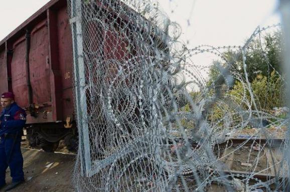Венгрия Сербия граница забор