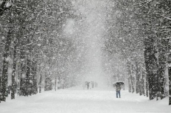 Цими вихідними на Прикарпатті очікуються снігопади