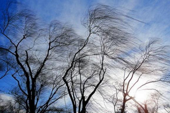 """Результат пошуку зображень за запитом """"сильний вітер"""""""