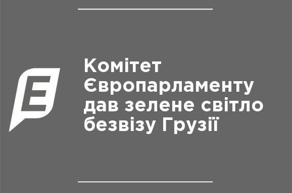Комітет Європарламенту дав зелене світло безвізу Грузії