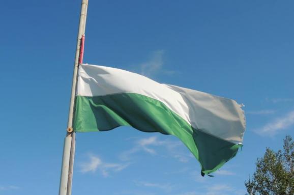 угорський прапор Закарпаття