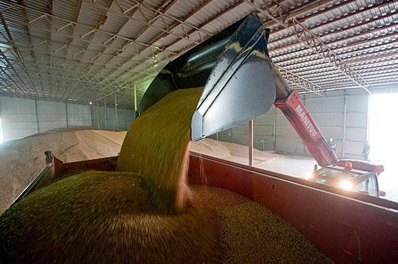 ВУкраїні зафіксовано новий рекорд зекспорту зернових,— МінАП