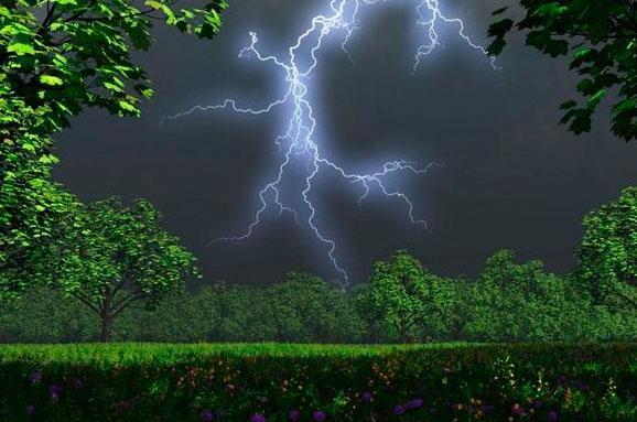 Короткочасні дощі та грози - як на Прикарпатті розпочнеться останній тиждень літа