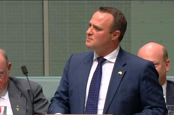 ВАвстралії депутат зробив пропозицію своєму колезі всесійній залі