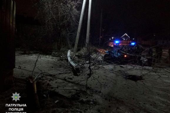 Під Києвом п'яна жінка тікала від поліцейських й знесла своїм BMW дерево та електроопору
