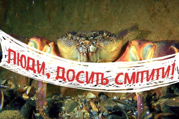 Такие же, как люди. Истории обитателей Черного моря