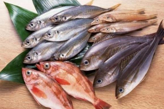 Вчені придумали, як лікувати рани рибою