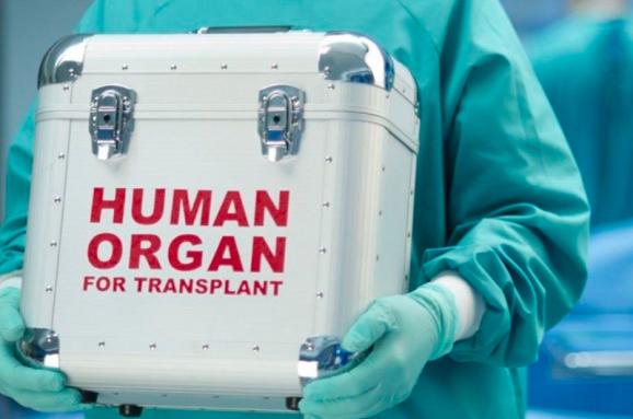 Донорство після смерті: Рада удосконалила трансплантацію органів вУкраїні