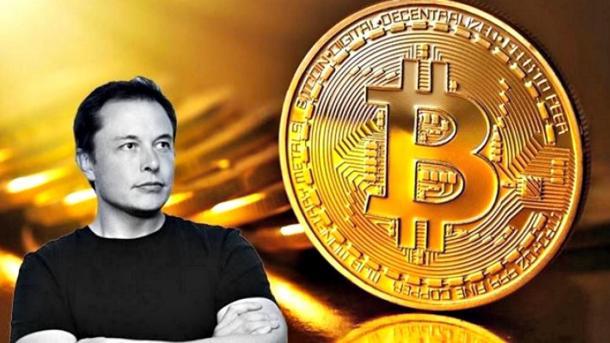Хакеры притворились Илоном Маском и выманили $170 тысяч в биткоинах