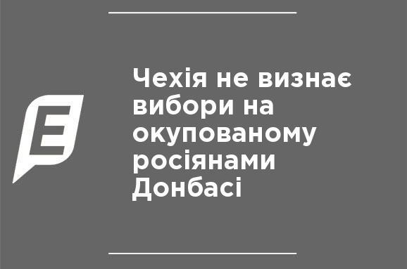 Чехія не визнає вибори на окупованому росіянами Донбасі