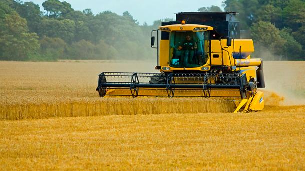 В Украине собрали рекордные 66,4 млн тонн зерновых