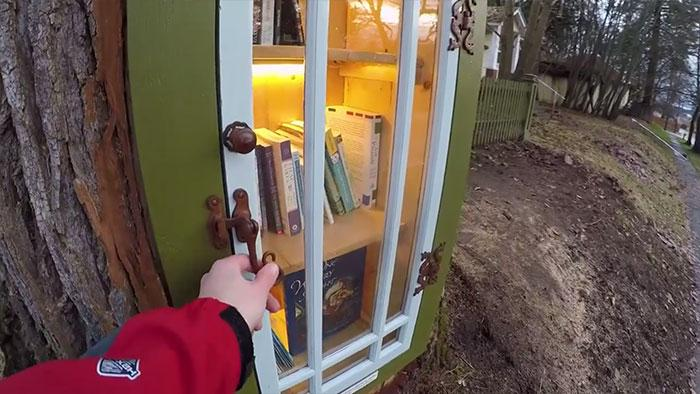 100-річна тополя стала бібліотекою (ФОТОФАКТ)