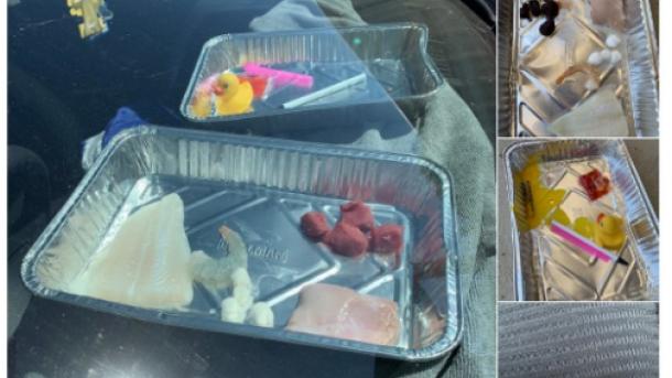 Жара в Австралии: люди жарят яичницу под солнцем на улице