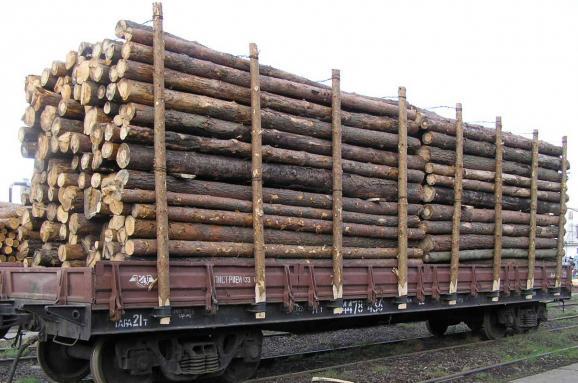У соцмережі запропонували спосіб боротьби із вивозом лісу-кругляка