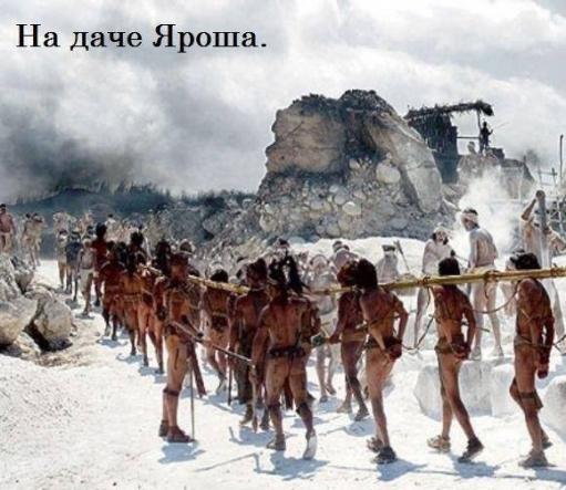 Бойцам АТО выделили более 800 земучастков на Львовщине - Цензор.НЕТ 6433