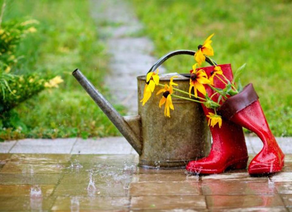 лійка з квітами й гумові чобітки