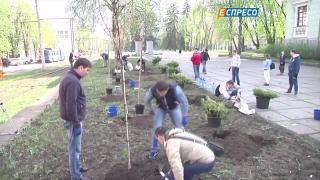 Японские сакуры высадили в Днепропетровске
