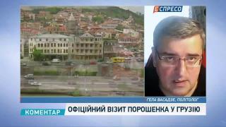 Васадзе: Порошенко запізнився на три роки з візитом у Грузію