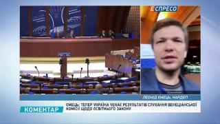 Ємець: український освітній закон є пріоритетним на Венеціанській комісії