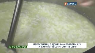 Агро-Експрес | Переселенці з Донецька розвели кіз та варять півсотні сортів сиру