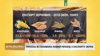 Агро-Експрес | Розведення фазанів - новий тренд лісомисливських господарств України