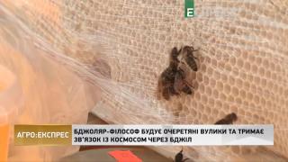 Агро-Експрес | Бджоляр-філософ будує очеретяні вулики та тримає зв'язок з космосом через бджіл