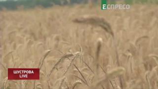 Ризики та переваги відкриття ринку землі || Юлія Савчук