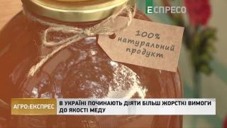 Агро-Експрес | В Україні починають діяти більш жорсткі вимоги до якості меду