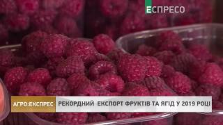 Агро-Експрес | Рекордний експорт фруктів та ягід у 2019 році
