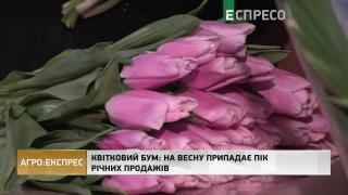Квітковий бум: на весну припадає пік річних продажів | Агро-Експрес