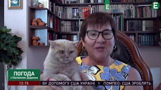 Синоптик Наталья Диденко предупредила про грозовые дожди на выходных