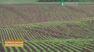 Коронавирус, земля, рынок страховых услуг, Укрспирт   Эспресо капитал