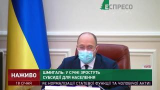 Шмыгаль: средняя субсидия в Украине на данный момент больше 1600 грн